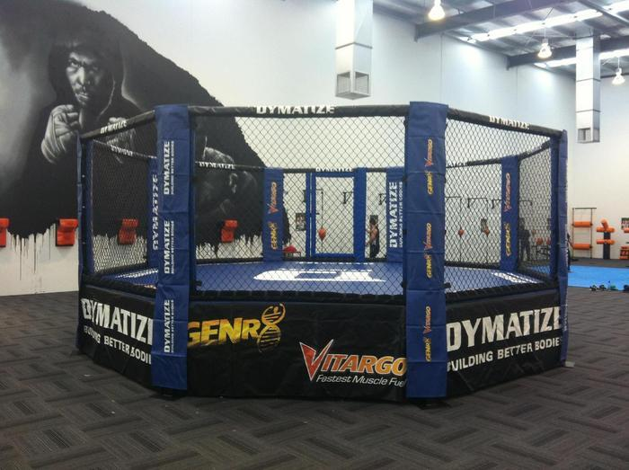 Zebra MMA Cages